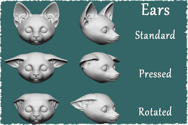A few types of ears for BJD fox cub
