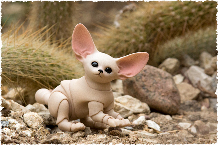 A little bjd fennec fox cub