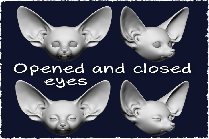 Opened and sleeping heads for fennec fox baby