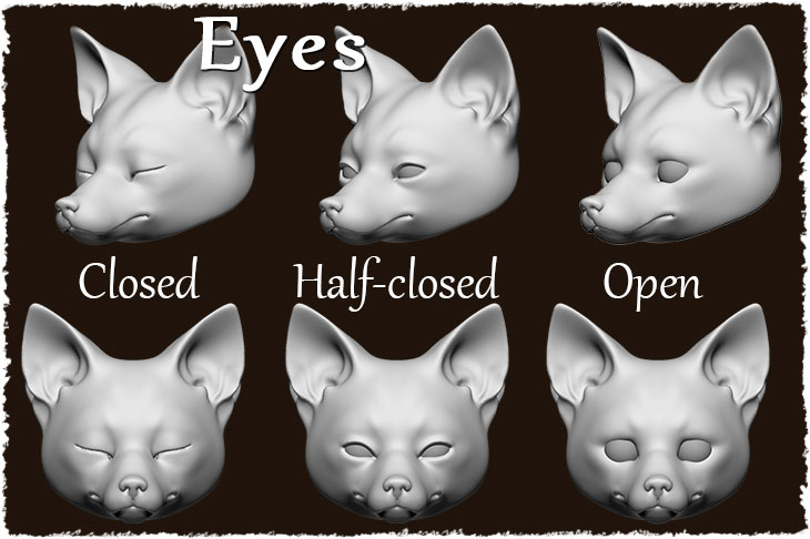 There are 3 options for the BJD adult fox