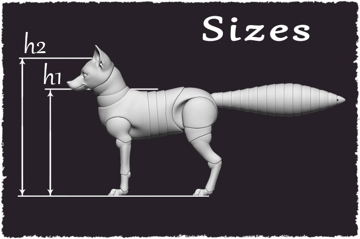 Sizes of the BJD fox