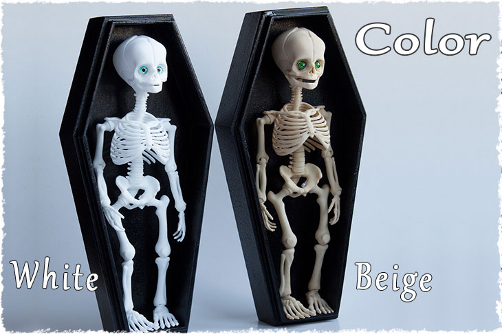 There are white and beige colors for BJD skeleton