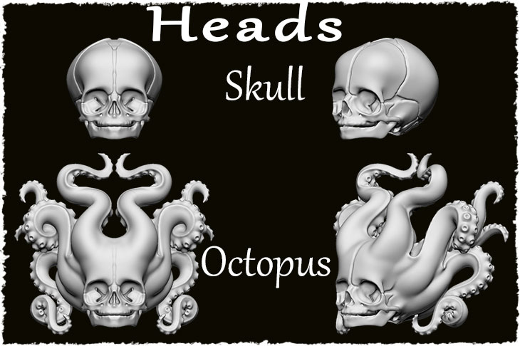 There are 2 types of the head. They are Skull and Octopus.
